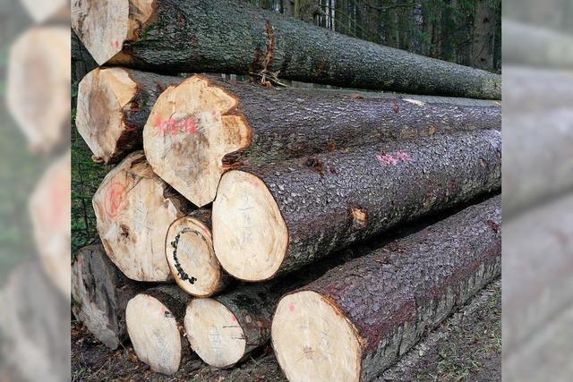 Waldbesitzer haben weniger Holz eingeschlagen