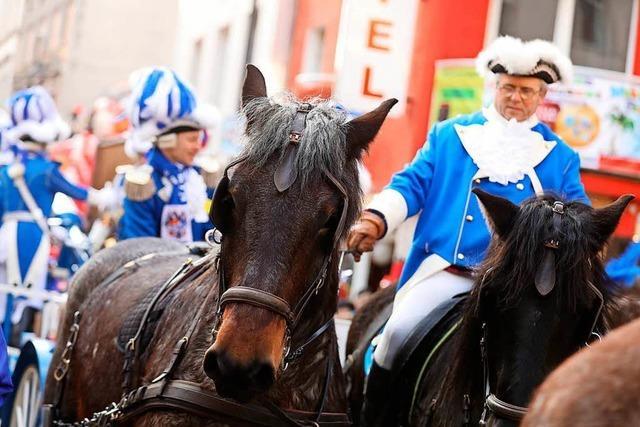 Pferdekutsche im Kölner Rosenmontagszug verunglückt