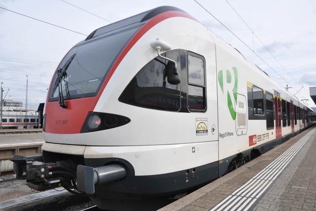 Bauarbeiten behindern die Wiesentalbahn in Basel und Lörrach
