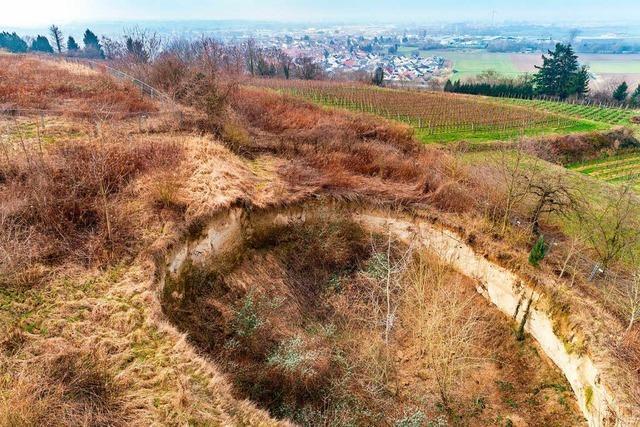 Der Kahlenberg ist an vielen Stellen einsturzgefährdet