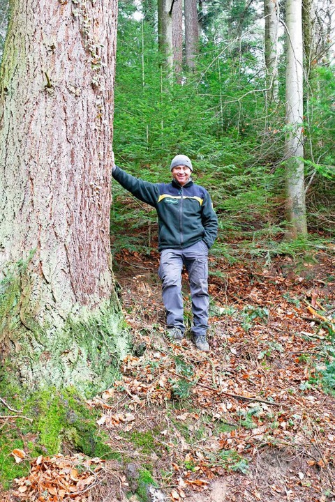 Forstdirektor Michael Kilian  | Foto: Helena Hiss