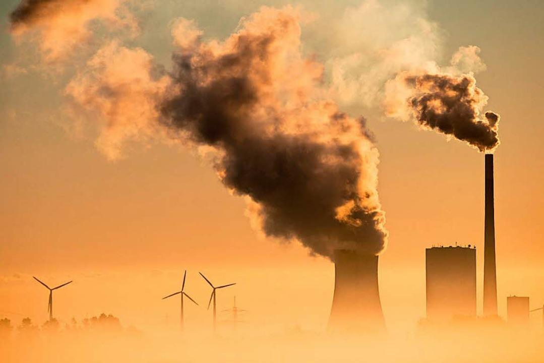 Im Hintergrund Windräder, im Vordergru...k – ein Bild aus Niedersachsen.   | Foto: dpa