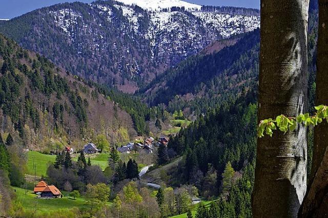 Schönheit einer Landschaft