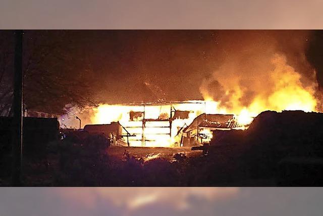 Brand in Steinener Rindermastbetrieb: Suche nach Ursache geht weiter