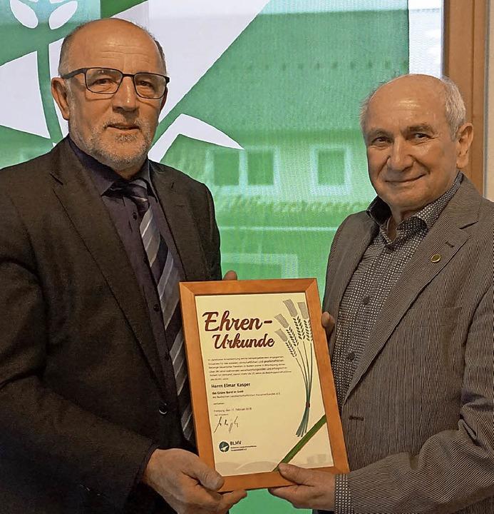 Mit dem Grünen Band in Gold wurde Elma...räsident Werner Räpple ausgezeichnet.   | Foto: Steckmeister/Bamberger