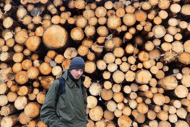 Gibt es auch in Europa Urwälder?