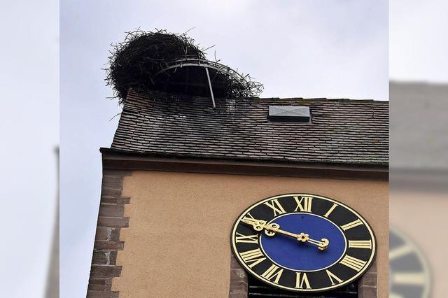 Storchennest in Efringen-Kirchen droht abzustürzen