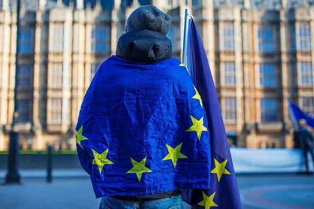 Neue Partei will gegen den Brexit kämpfen