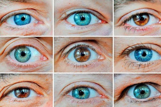 Tückisch und lange symptomfrei: Ein Glaukom kann zur Erblindung führen