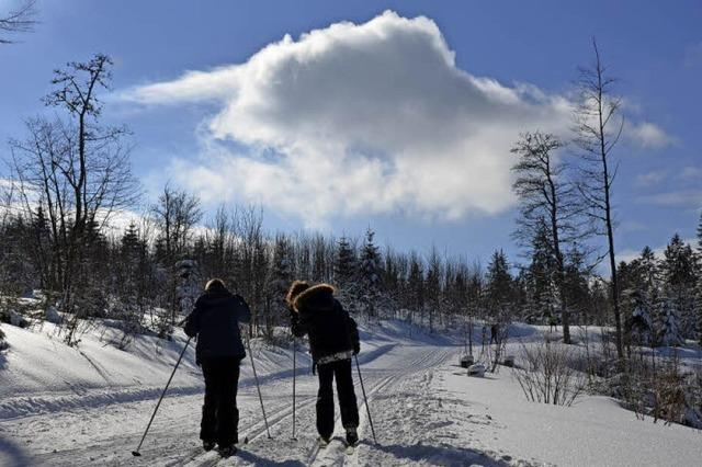 Skilanglauf mit Kindern
