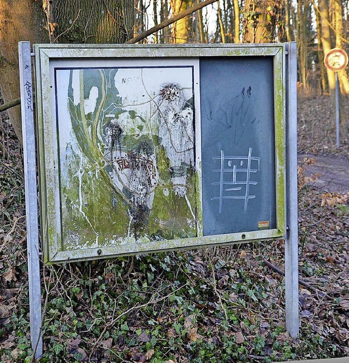 Ein schmucker Festungswaldrundweg soll...n auf Natur und Geschichte hinweisen.   | Foto: Marco Schopferer