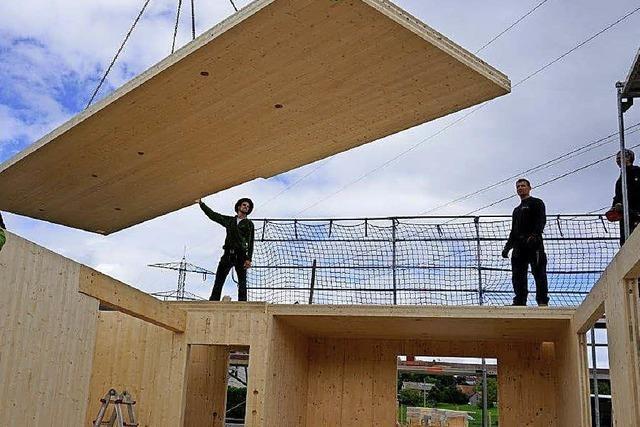 Traumhaus aus Holz