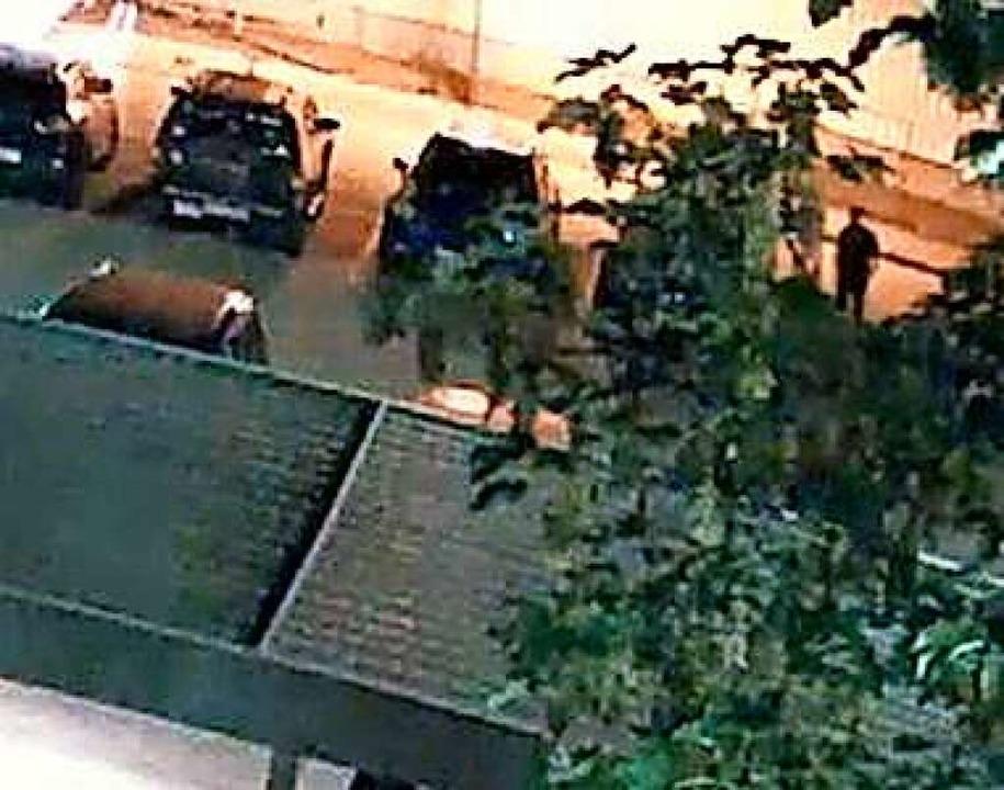 Der Mann, auf den Bildern der Kamera hinter einer Baumkrone zu sehen.  | Foto: Polizei