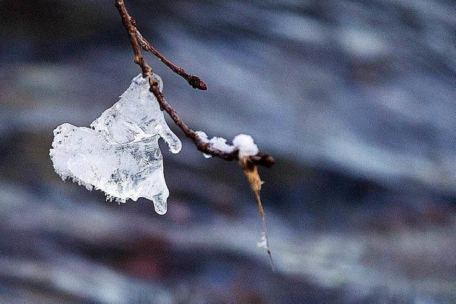 Wie man sich gegen die Kälte der kommenden Woche wappnet