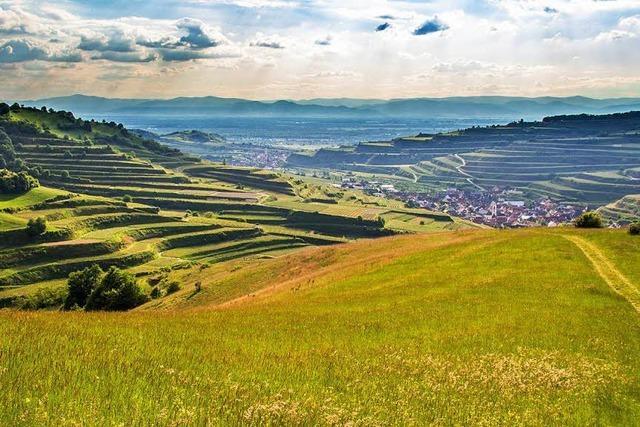 Im Ihringer Naturzentrum Kaiserstuhl beginnt die neue Saison