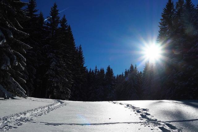 Wetterphänomen sorgt für Eiseskälte in Südbaden – Minus 20 Grad im Schwarzwald