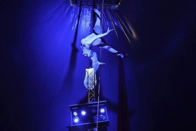 Zirkus Lamberti