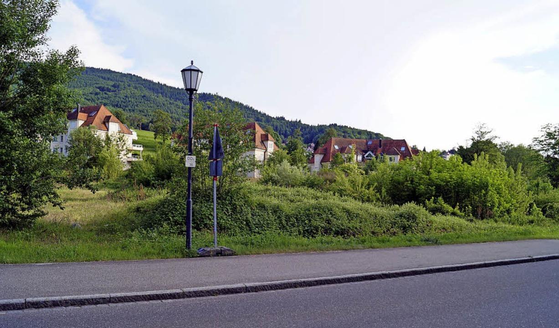 Im Gebiet Hasenburg an der Schweighofs...it nicht störendem Gewerbe entstehen.     Foto: Hartenstein