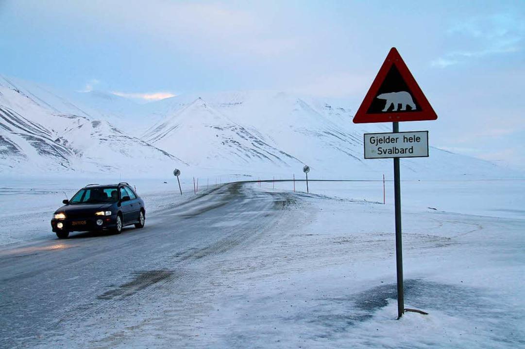 In Norwegen drohen neben vereisten Straßen mancherorts auch Eisbären.    Foto: dpa