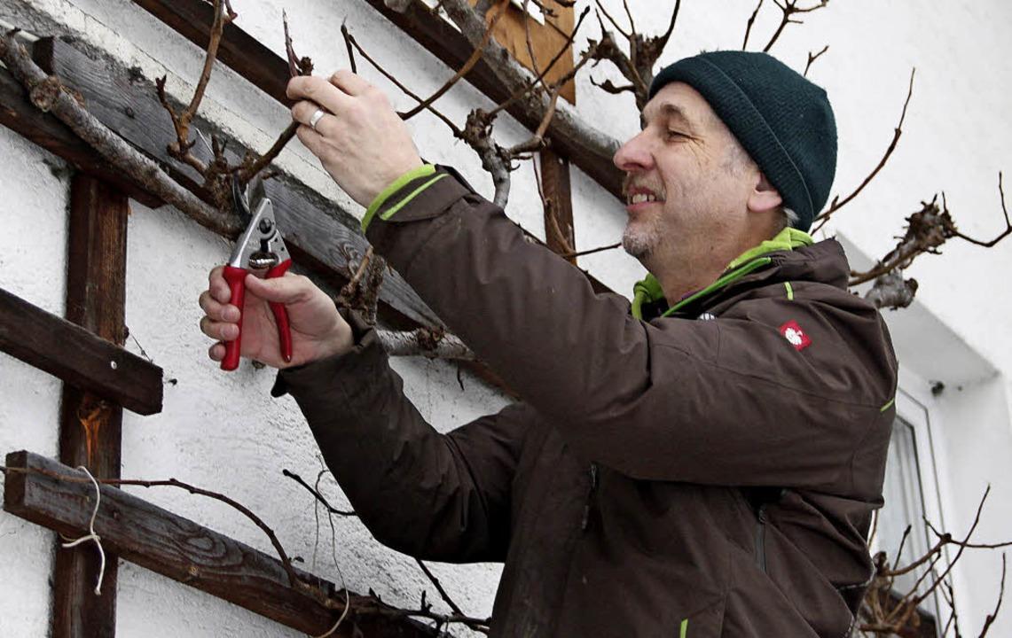 Obstbäumen die richtige Frisur verpass...nzungen oder beim Schneiden mitwirken.  | Foto: Christa Maier
