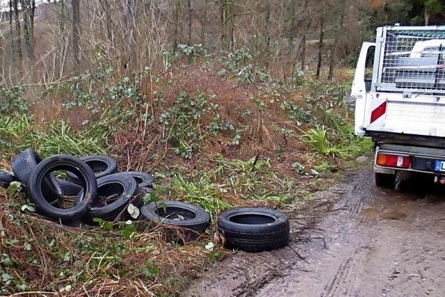 Wenn die Reifen im Wald landen