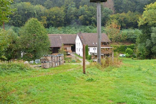 Degerfelder Pferdegnadenhof erhält Baugenehmigung