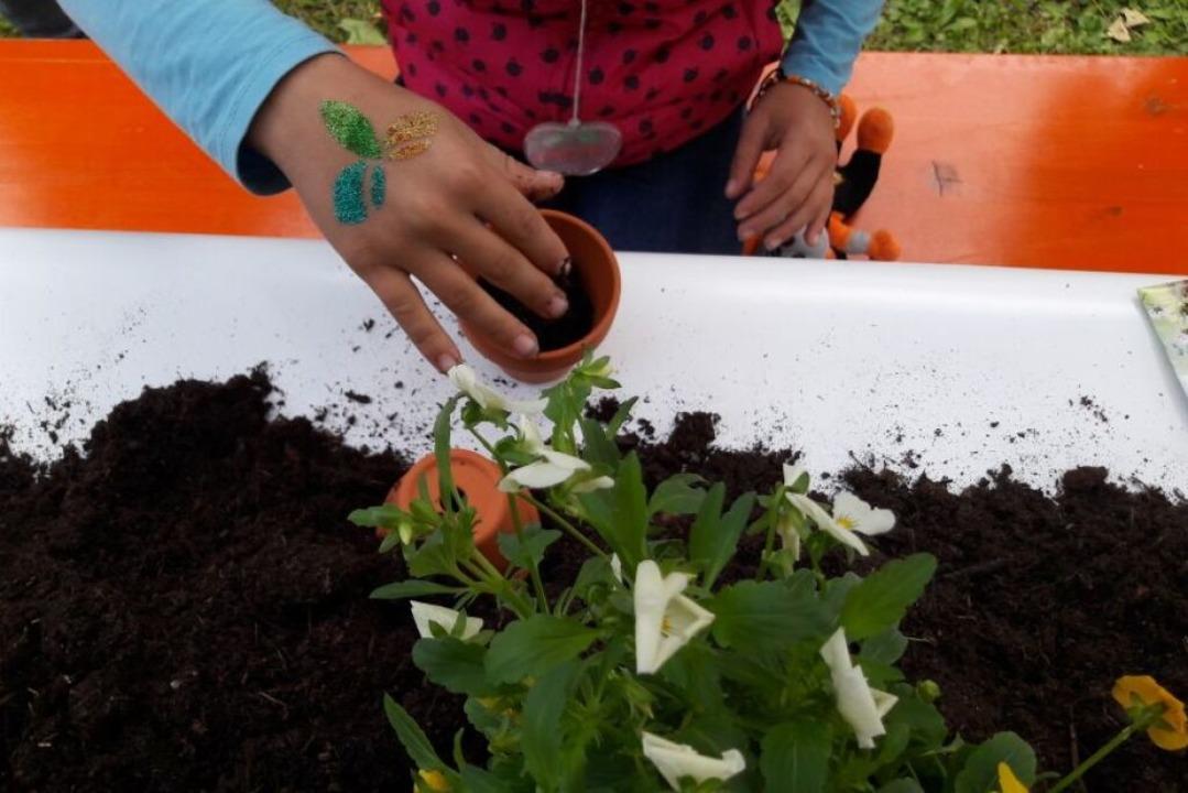 Beim Grünen Klassenzimmer dürfen Kinder selbst pflanzen und buddeln.  | Foto: LGS Lahr 2018 GmbH, Fotografin Christine Breuer
