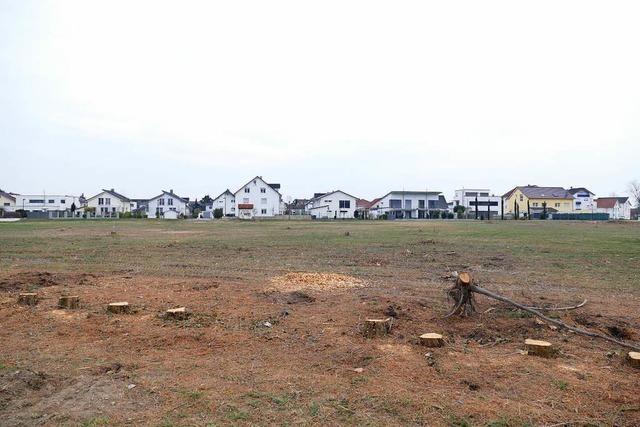 Breisacher Gemeinderat stimmt Planentwurf für Neubaugebiet zu