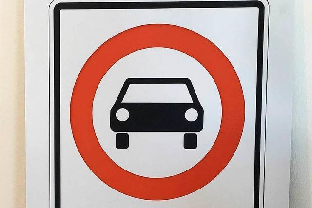 Fahrverbote, Steuern, E-Motoren : So machen es andere Länder bei dreckiger Luft