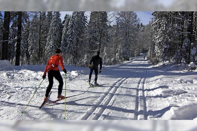 Ein Traumwinter für Skilangläufer
