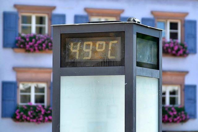 Diese Orte in Freiburg leiden bei Hitze besonders unter hohen Temperaturen