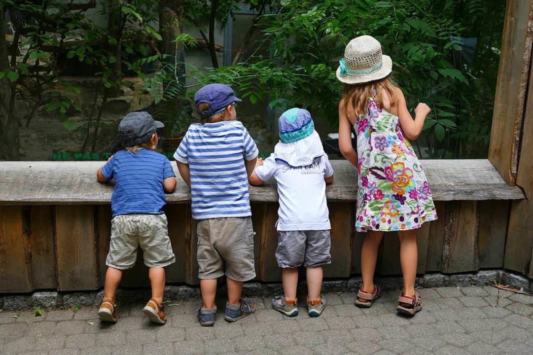 Staunende Kinder am Gehege im Zoo Mulhouse.  | Foto: Silke Kohlmann