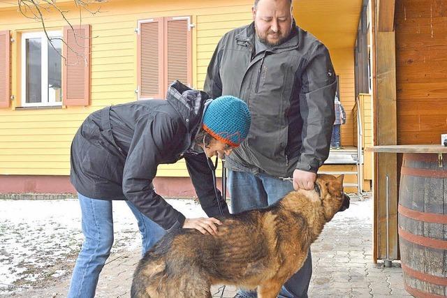 Damit Hund und Mensch gesund bleiben