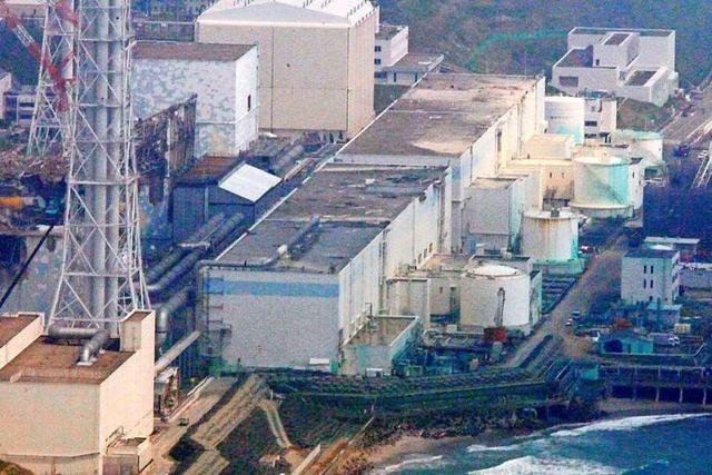 Was ist damals in Fukushima passiert?