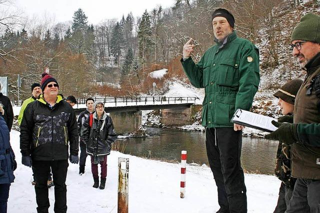 Holzauktion im Winterwald