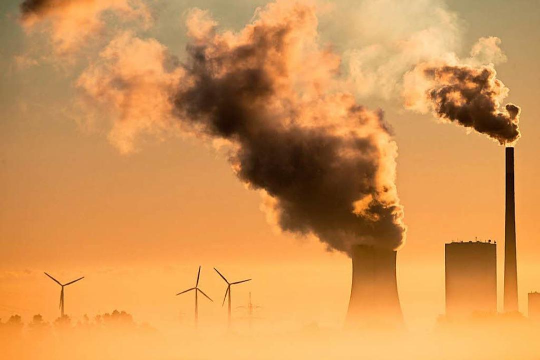 Klimaschädlichen Unternehmen soll die Unterstützung entzogen werden.  | Foto: dpa