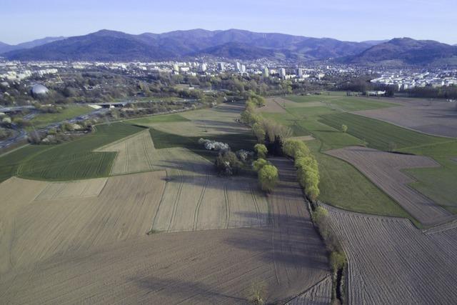 Mehr als drei Viertel der privaten Flächen in Dietenbach stehen zum Verkauf bereit
