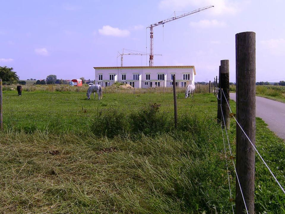 Baugebiete auf der grünen Wiese lassen landwirtschaftliche Flächen schrumpfen.  | Foto: Thomas Jäger