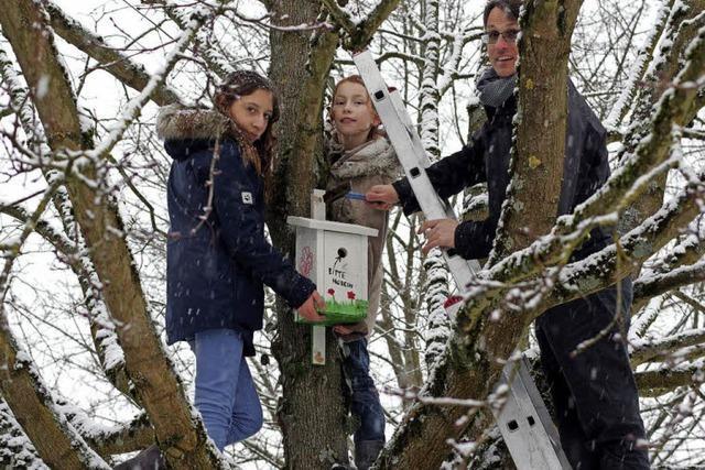 Gastliches Hochdorf: neue Nistkästen