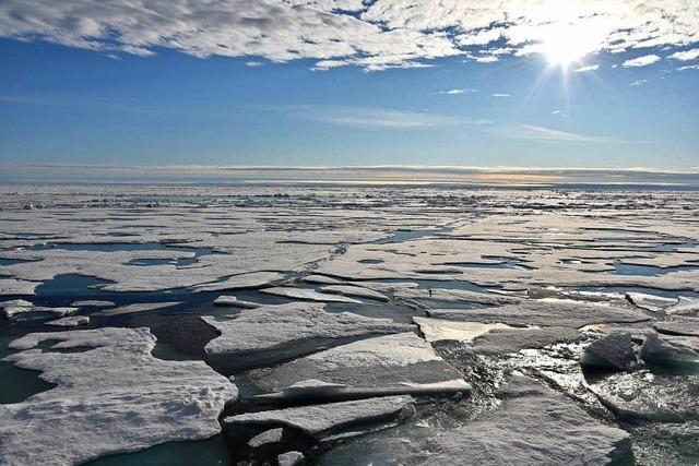 Das Eis in der Arktis wird immer dünner