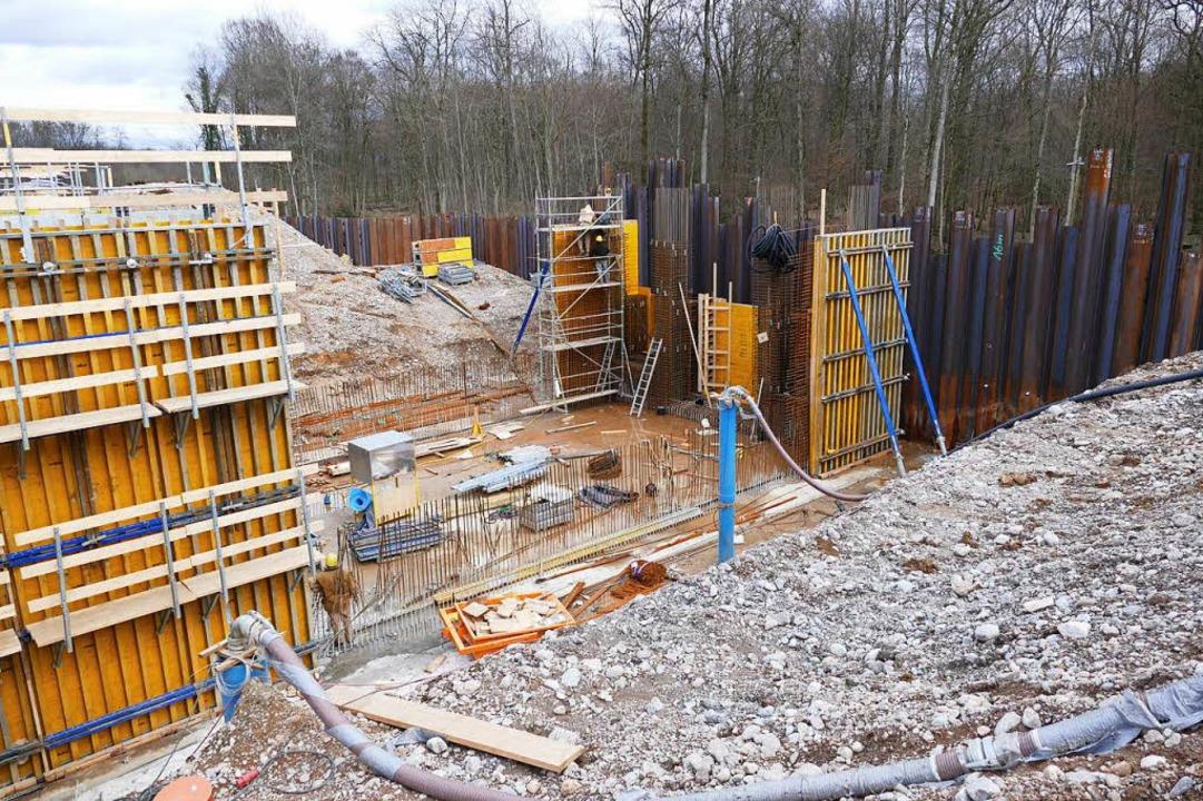 Eine Spundwand aus Eisen schirmt die B...t Wald bestandenen Rückhaltebecken ab.  | Foto: Manfred Frietsch