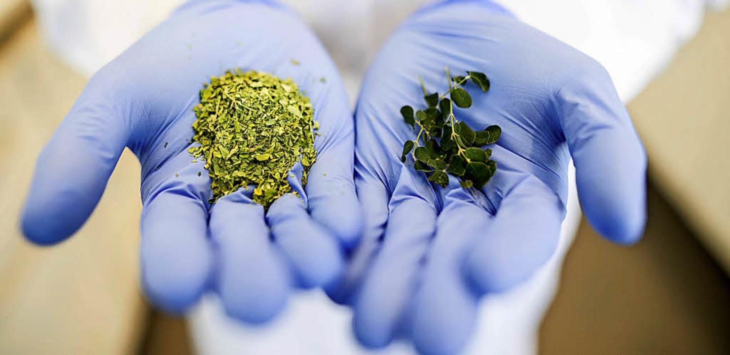 Ob das zerstoßene Superfood auch wirklich die Pflanze enthält?     Foto: dpa