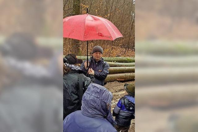 Mit Schirm und Charme zu neuem Brennholz