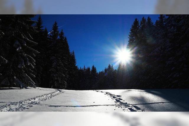 Der Winter kommt im Südwesten zurück – und bringt auch Schnee