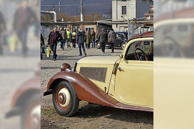 Alte und amerikanische Autos glänzen