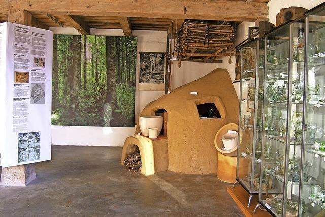 Wald- und Glaszentrum soll wachsen