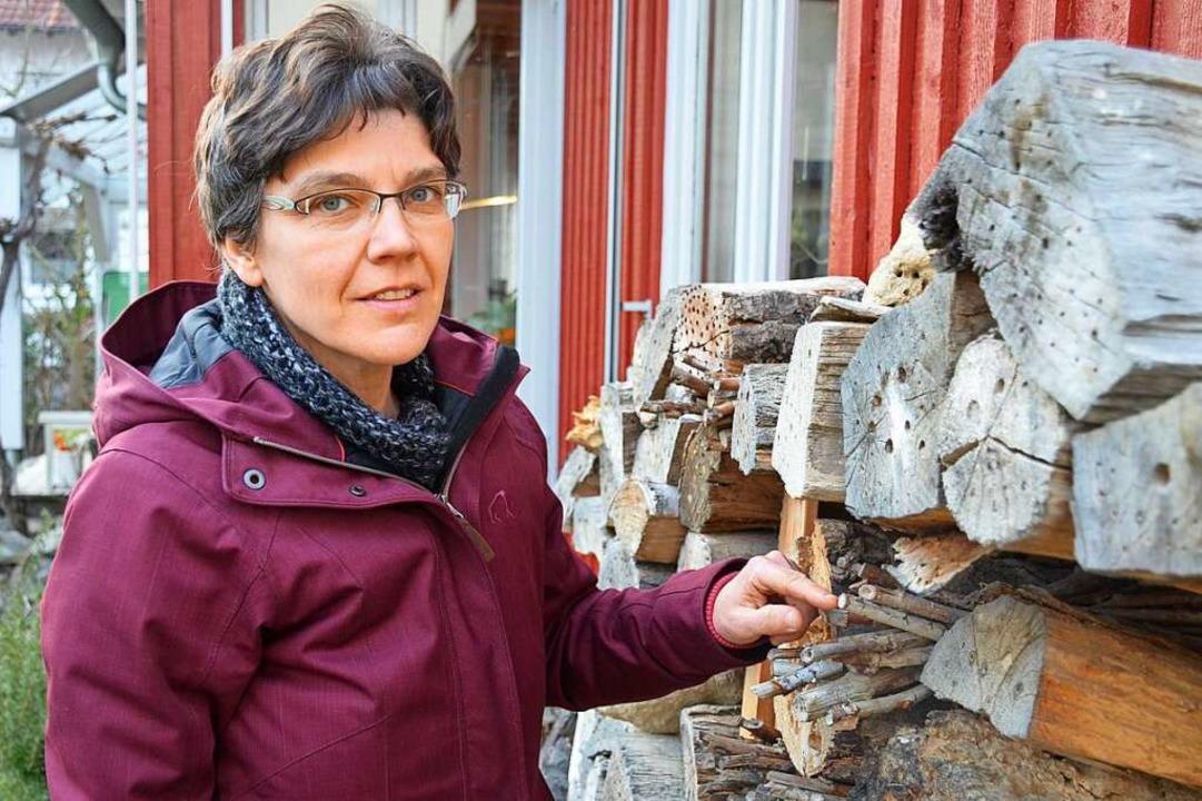 Hummeln und Pelzbienen mögen Lavendel, erklärt die Expertin Ulrike Stephan.  | Foto: Gabriele Hennicke