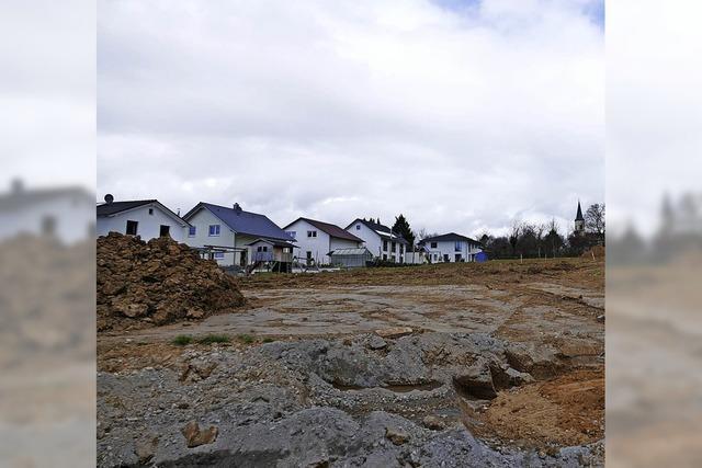 Auch Mehrfamilienhäuser vorgesehen