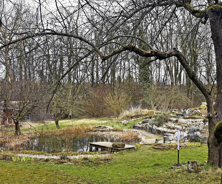 Der Heilpflanzengarten erwacht langsam aus der Winterruhe.   | Foto: Michael Bamberger