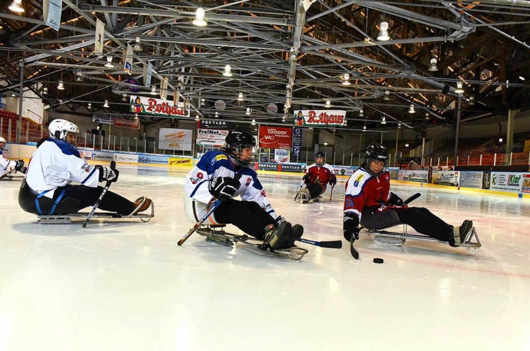 Neu in der Freiburger Franz-Siegel-Halle: Para-Eishockey   | Foto: Rita Eggstein